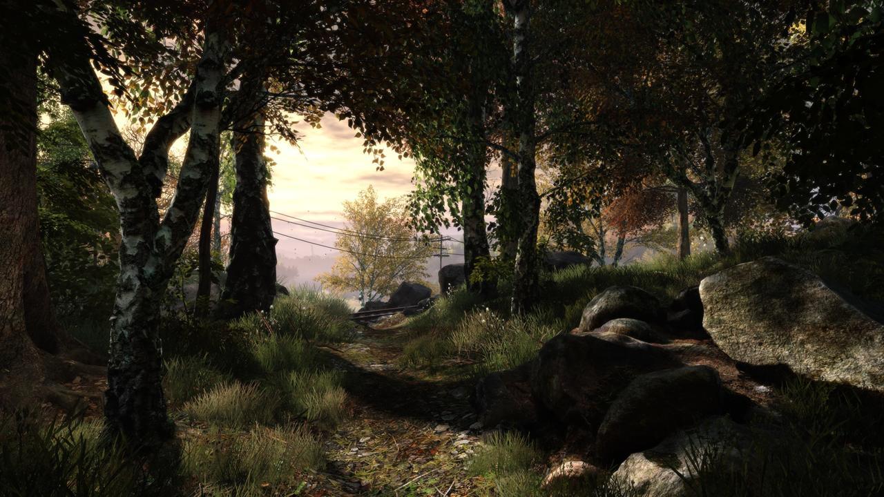 2579515-tvoec_screenshot_07_forest_path